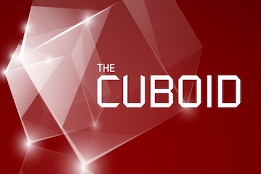 <p>The Cuboid</p>